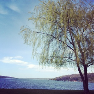 Cayuga Lake is one of the long, narrow Finger Lakes. It's also where a serial killer allegedly dumped his kills in the 1800s.