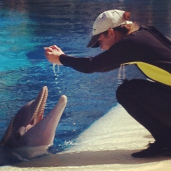 Trainer and dolphin at The Mirage via Instagram
