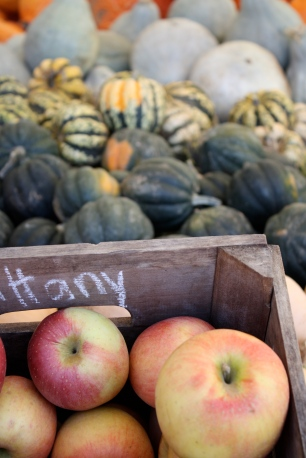 Apples and gourds | Where Erin Goes