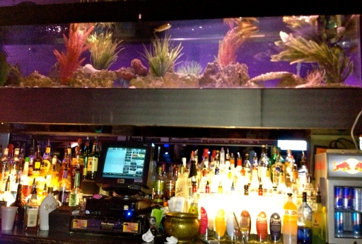 Fish tank at a bar. There are stranger things.