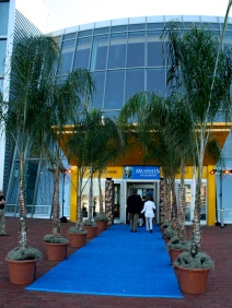 The blue carpet rolled out for VIPs   Where Erin Goes