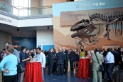 VIP Preview of Mummies of the World