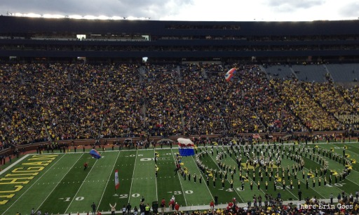 Skydivers land on the field during the pre-game show Nov. 9 at Michigan Stadium.