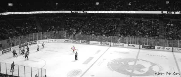 The Grand Rapids Griffins take on the San Antonio Rampage on Feb. 14, 2014, at Van Andel Arena.