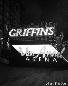 Grand Rapids Griffins at Van Andel Arena