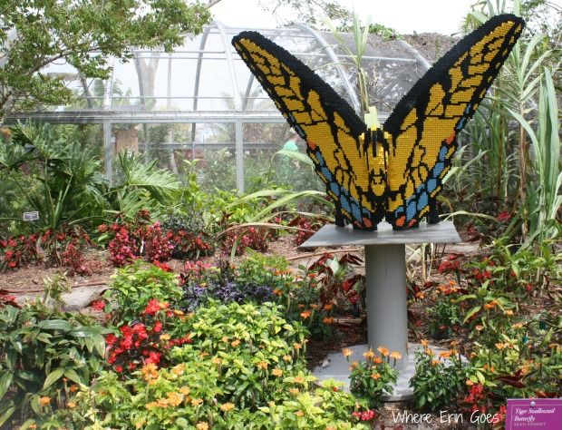 This Tiger Swallowtail Butterfly is part of a LEGO exhibit at the Naples Botanical Garden through May 11. It is made of 37,481 LEGO bricks. (Photo by Erin Klema.)