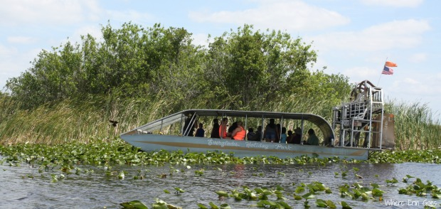 An airboat at Everglades Holiday Park in Fort Lauderdale (Photo by Erin Klema)