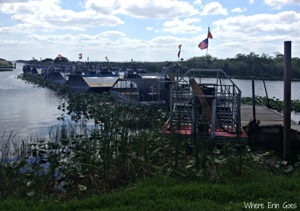 Airboats at Everglades Holiday Park in Fort Lauderdale, Florida (Photo by Erin Klema)